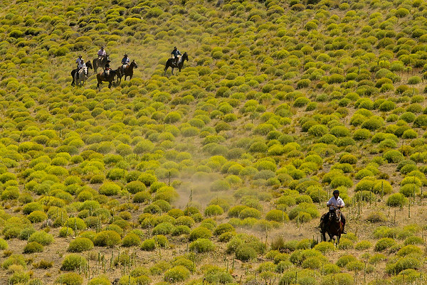 Trail Riding Patagonia
