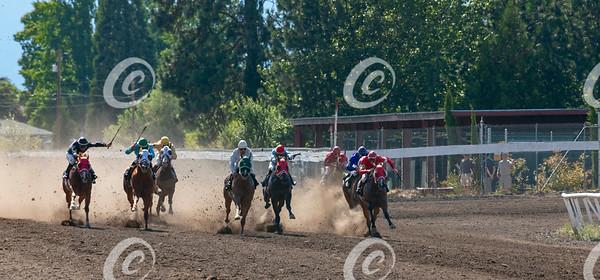 Quarter Horse Race