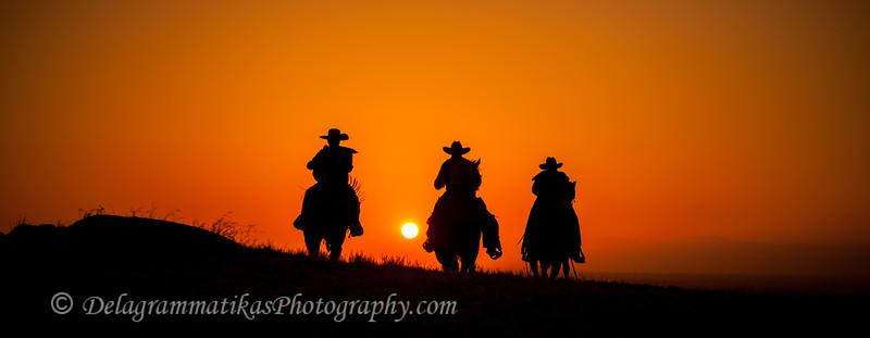 20130519_Cowboys and Horses_9933