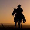 Cowboy | Norco, CA