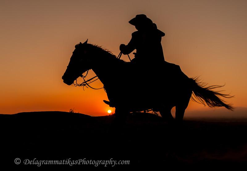 20130519_Cowboys and Horses_9946