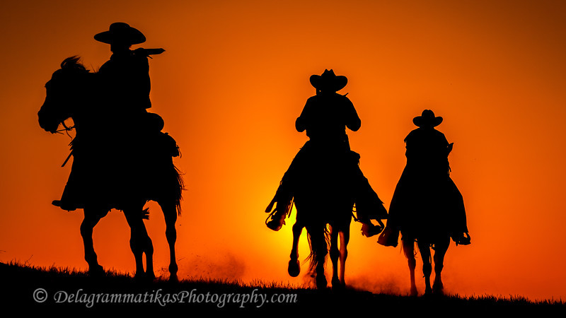 20130519_Cowboys and Horses_9899