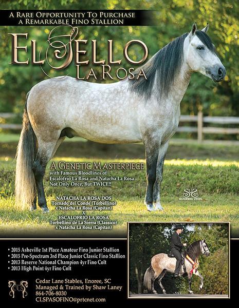 Sello-blast-LR