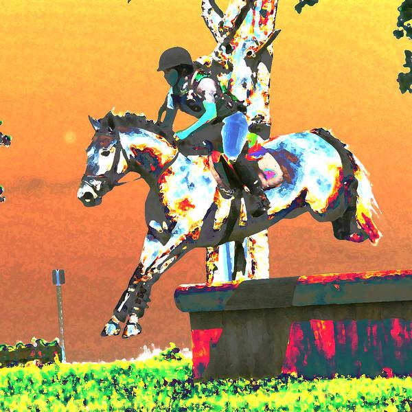 GVH Horse Trials 2009