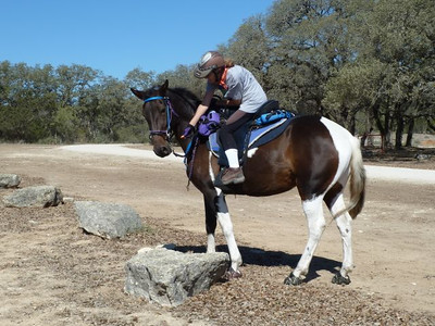 My first ride on Twylah was a delight.