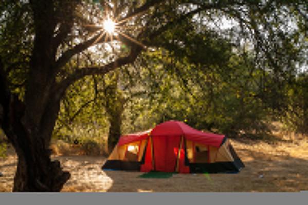 Horseshoe Camping trip
