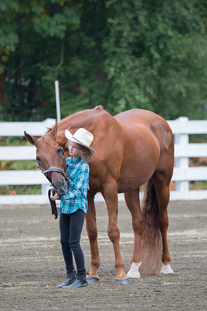 August Vimy Show - Halter and Showmanship