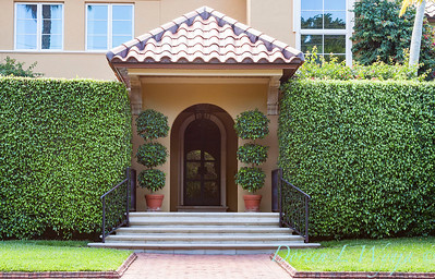 Ficus benjamina formal front door entry_2741