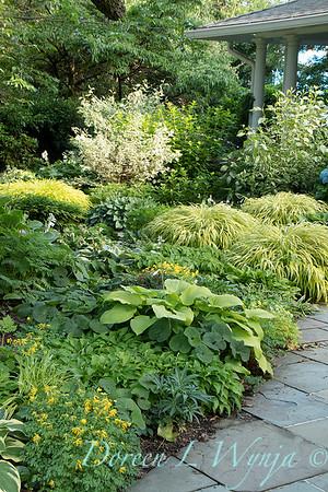 Hosta shade garden_9834