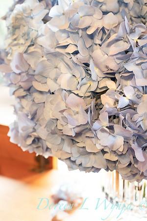 4196 Hydrangea macrophylla 'Nikko Blue' in a vase_3060