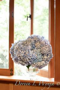 4196 Hydrangea macrophylla 'Nikko Blue' in a vase_3052