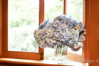 4196 Hydrangea macrophylla 'Nikko Blue' in a vase_3056