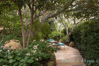 Hydrangea macrophylla normalis under Eriobotrya japonica - Prunus laurocerasus 'Schipkaensis' hedge - outdoor dining_0814