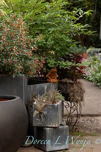 Cuphea Vermillionaire - container garden_9497