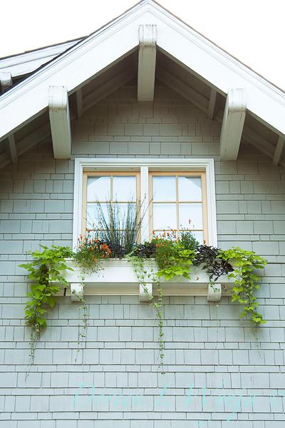 Window Box_002