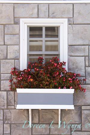 Begonia flower box_6518