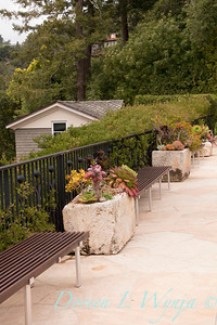 Succulent trough and bench border_3929