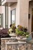 Succulent container garden_6940