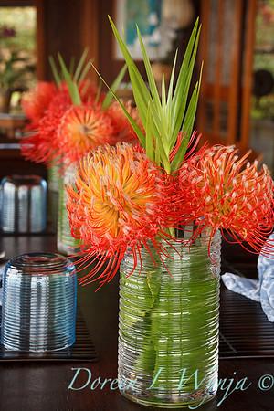 Leucospermum reflexum hybrid 'So Exquisite' cut flowers_6813