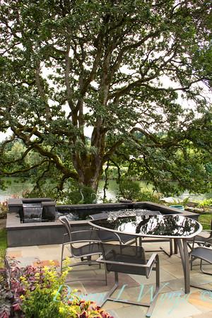 Quercus garryana Outdoor living_003