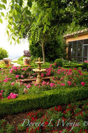 Rosa Flower Carpet Pink Landscape_001