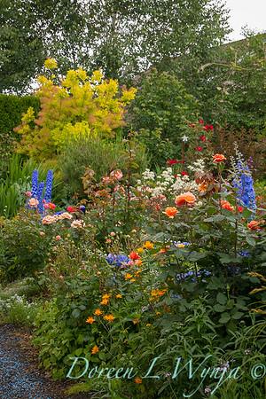 perennial and rose garden_8372