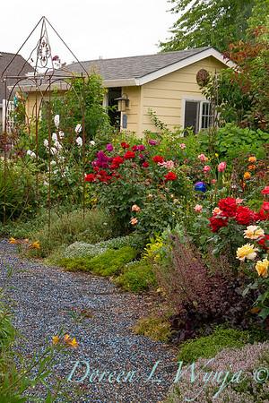 perennial and rose garden_8377