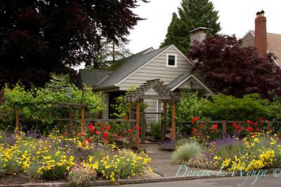 Urban garden_9088