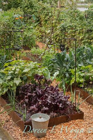 Urban vegetable garden in what used to be the front yard, using recycled bamboo for tomato supports, rusted metal edged raised bed of corten slates; featured in 'Real Gardening' bookazine winter of 2018