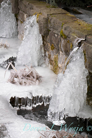 Water Feature_9271