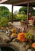 Tropical Landscape Solenostemon Rustic Orange_001_Doreen Wynja