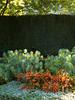 Mediterranean garden_003