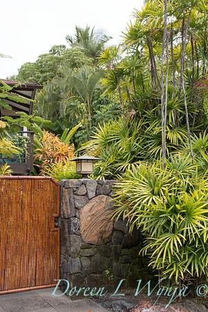 Rhapis excelsa - tropical landscape - garden gate_2910