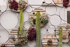 Succulent living wall_4581