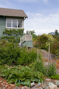 Vegetable garden_1093