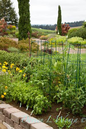 urban vegetable garden - stacked paver raised bed - veggie garden - garden support -  trellis bamboo - tomato cages