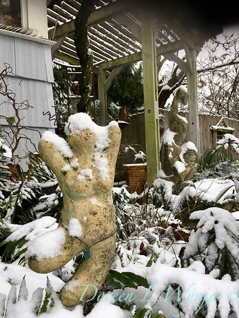 Dancing lady in the snow_2376
