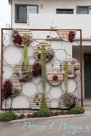 Succulent living wall_4578