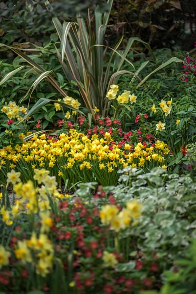 3-14-16 View - Garden Path-238