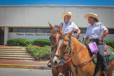 Hospice-Sheriff-50714-4284