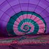 Pittsfield Hot Air Balloon Rally