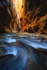 Glowing canyon walls in Zion