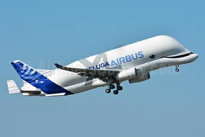 "The new ""Beluga XL"""