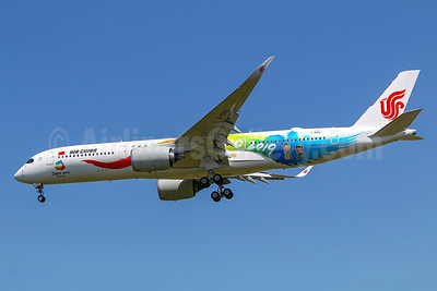 """2018 """"Expo 2019 Beijing"""" promotional livery"""