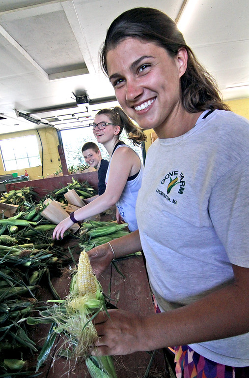 . Some of the summer help at Gove Farm in Leominster shown here grading fresh picked corn, in front is Amanda Mills 20 of Leominster. SEN/David H. Brow