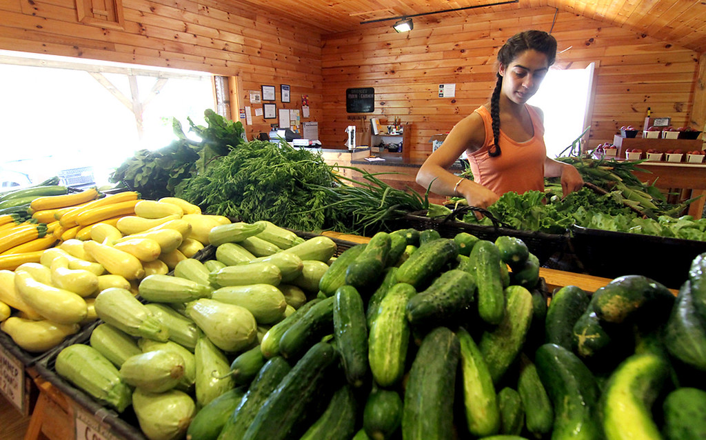 . Staff worker for Harper Farms, Sarah Mpelkas 22 of Stow, working in the farm stand in Lancester. SEN/David H. Brow