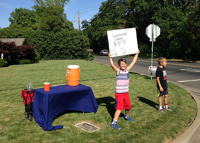 "Young entrepreneurs: Maverick and Lucas seek support from passersby at their lemonade stand Tuesday on the corner of Vallombrosa and Crister avenues in Chico. Readers can submit photos for consideration to ""Hot Shot"" at photo@chicoer.com or tag their photos with #thisischico on Instagram."