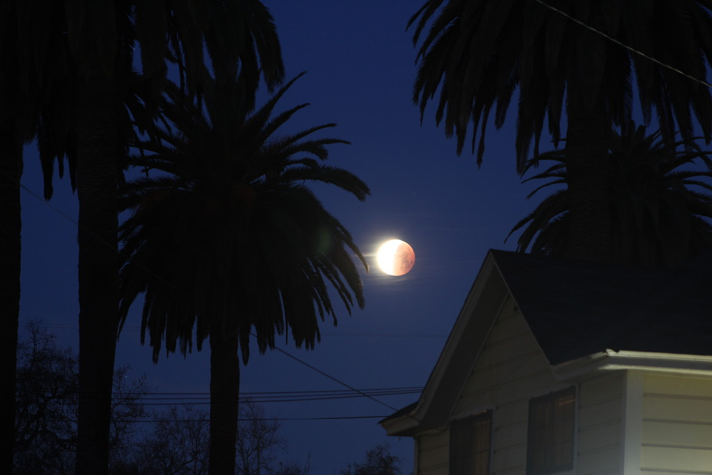 . The Super Blue Blood Moon seen in Woodland, California, Jan. 31, 2018. (Hans Peter -- Woodland Daily Democrat)