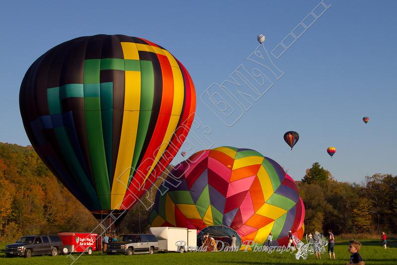 10-09-2011-Wolf_Oak_Balloons-0357