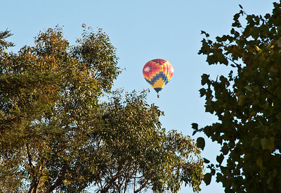 hot-air-balloon-flight